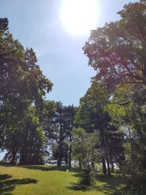 Projekt Naturvermittlung