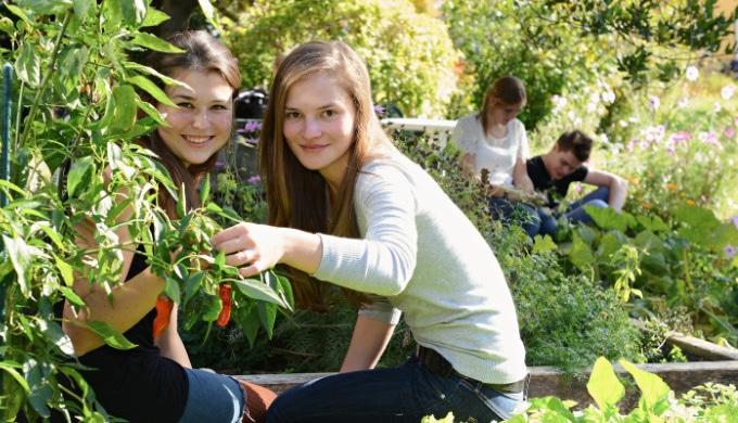 Bachelor Umweltpädagogik – HAUP