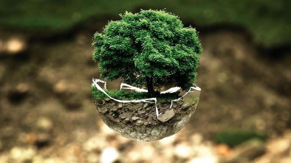 Online-Veranstaltung zum Earth Day 2021 am 22. April 2021