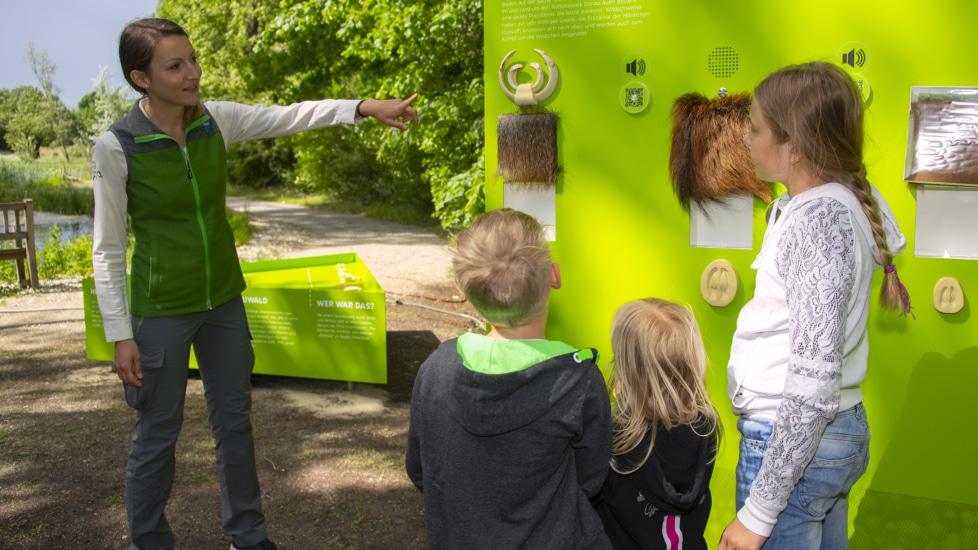 Klassenzimmer Natur – Die Plattform Naturvermittlung bietet naturpädagogische Programme für Schulen an