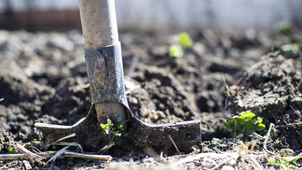 ONLINE Studientag Beratung 11. Mai Humusaufbau und Humus-Zertifiatshandel – Chancen und Grenzen für die Landwirtschaft?